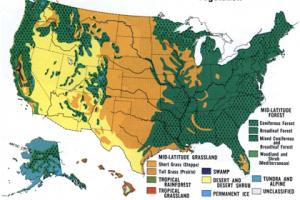vegetationmap